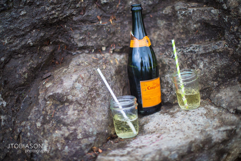 champagne engagement shoot photo