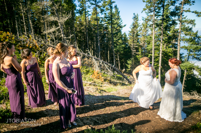 Brides and bridesmaids stand on mt constitution photo