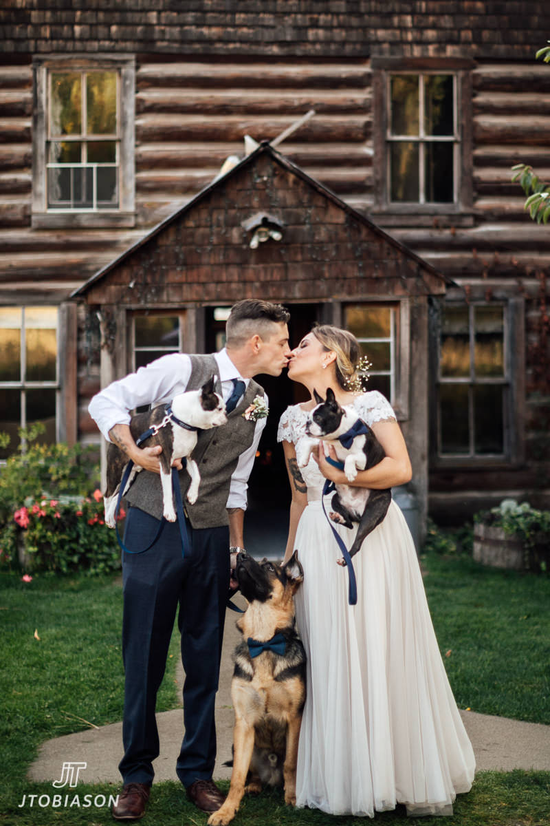 bride and groom kiss with dogs brown family homestead wedding