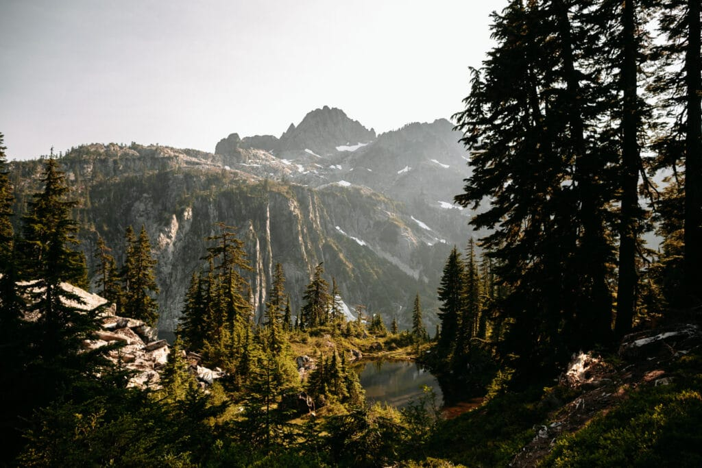 mountain lake olympic national park elopement
