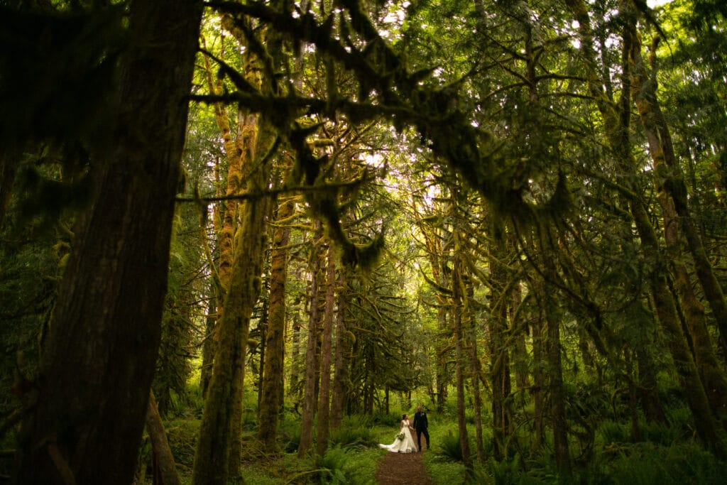 couple holds hands in mossy rich forrest during salish lodge wedding