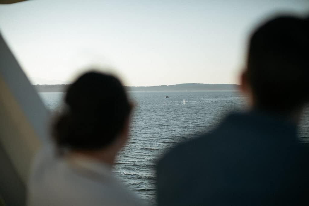 couple looks at whales during bainbridge island ferry wedding